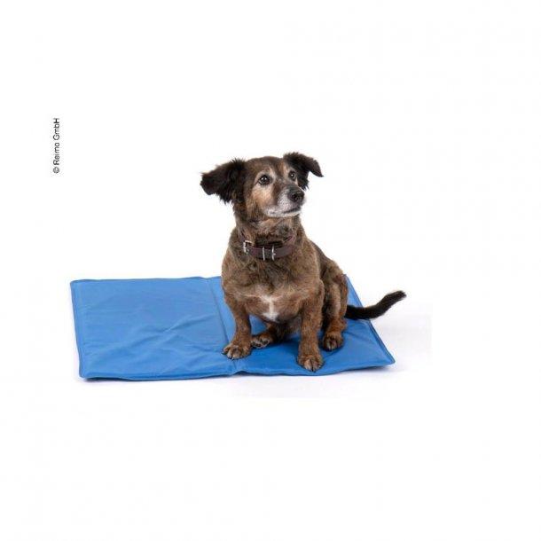 Komfort kølemåtte til hund – Blå – 50 x 65 cm